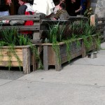 Greenscape Design - Burgoo Patio Planters Grass