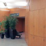 Greenscape Design In-House Design Areca and Bamboo