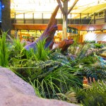 Greenscape Design - Vancouver Airport West Coast Ferns Grass