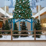 Greenscape Design - santa set lougheed mall christmas tree woods fencing holiday decor
