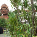 Greenscape Design Buddah Bamboo Grove Event Decor