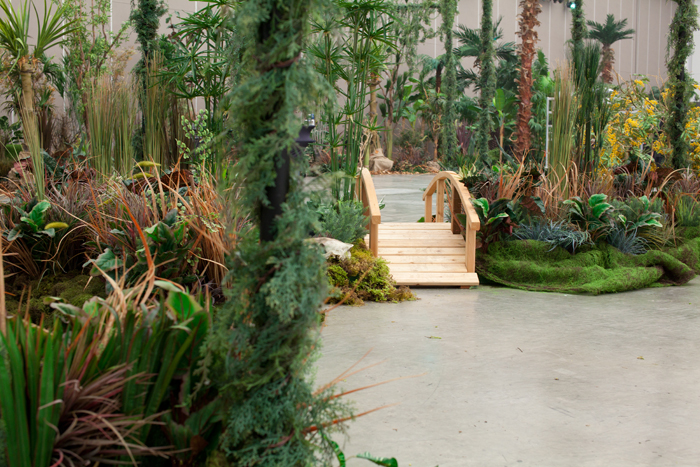 Rainforests of the world project greenscape for Decoration jungle