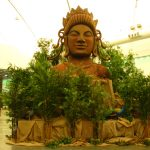 Greenscape Design Buddha Display