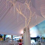 Greenscape Design White Manzanita Branch wih Crystal Garland