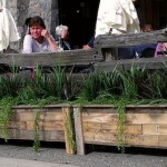 Greenscape Design Burgoo Main Street Reclaimed Wood Planters