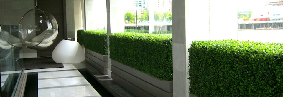 Greenscape Design Residential Interiorscape