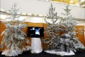 Greenscape Design 2010 olympics winter Wonderland