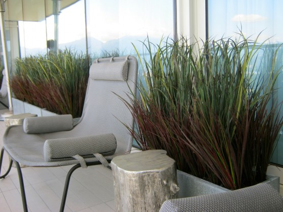 Exterior-Patio-Grey-Concrete-Planters-with-Burgundy-and-Green-Grasses-7-560x420