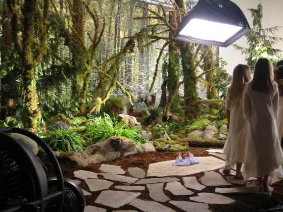 Greenscape-Design-Barbie-Commercial-Stepping-Stones-and-Mossy-Evergreen-Forest-560x420