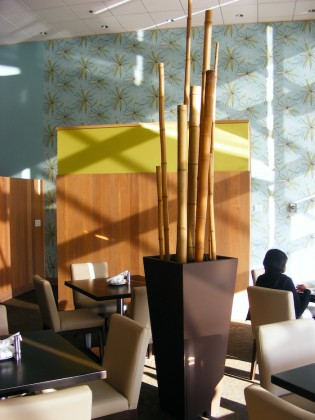 Bamboo Planters Hotel Restaurant Office Greenscape