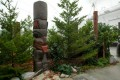 Greenscape Design RIMS Conference Pacific Northwest Rainforest Totem