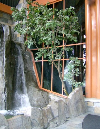 Greenscape-Design-River-Rock-Casino-Westcoast-Exterior-Entrance-Vine-Maple-Tree-and-Waterfall-324x420