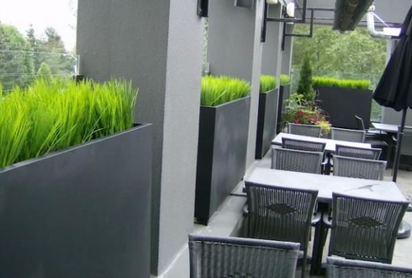 Greenscape Design Vanilla Grass Exterior Steel Planters With Cedar  Topiaries In Zinc Pots