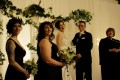 Greenscape Design Wedding Decor Bridal Party