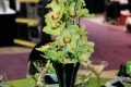 Greenscape Design Wedding Decor ntrepiece