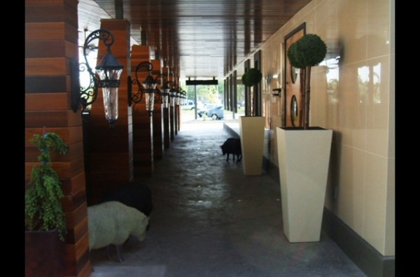 Chop restaurant richmond greenscape design decor