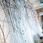 Greenscape Design Birch and Crystal Weddinh Backdrop