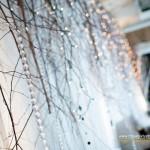Greenscape Design Birch and Crystal Weddinh Backdrop