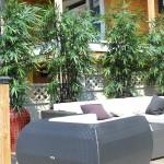 Greenscape Design Black Bamboo Privacy Screen