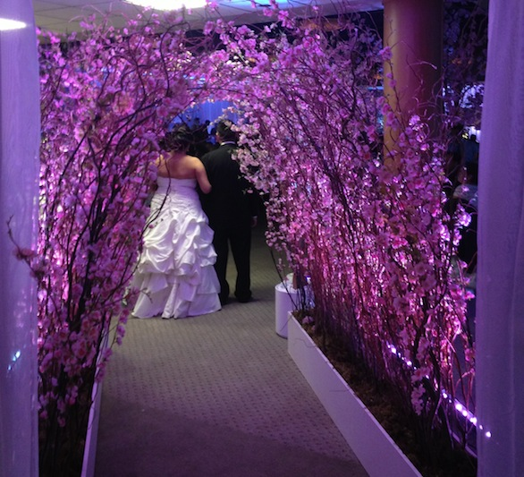 Cherry blossom wedding decor greenscape cherry blossom wedding decor junglespirit Gallery