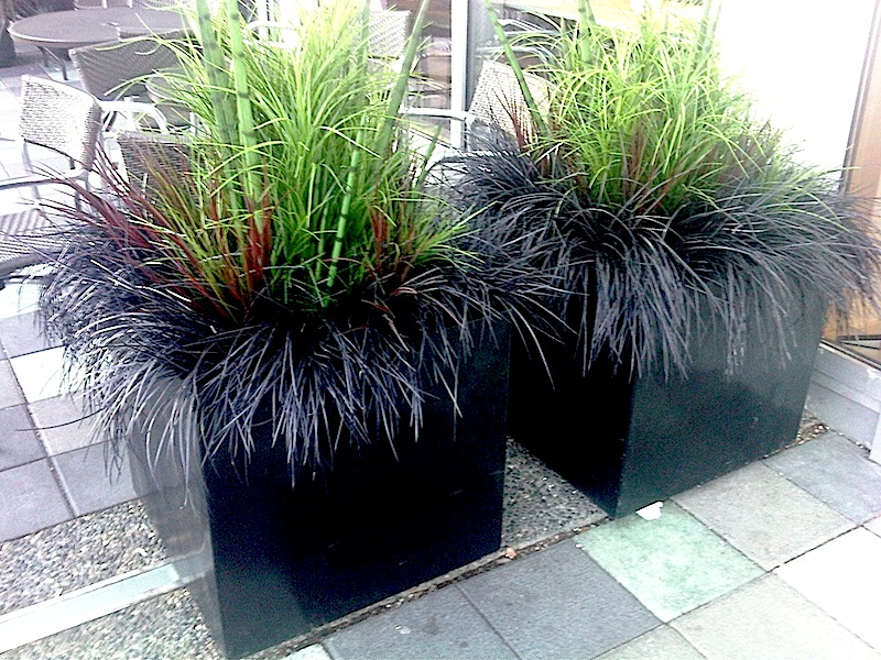 Greenscape Design Commerical Exterior Planters