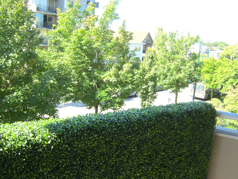 Greenscape Design Condo Balcony Boxwood Privacy Wall