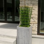 Greenscape Design Decorative Home Decor Snake Grass and Succulent Exterior Planter