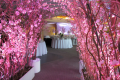 Greenscape Design Pink Cherry Blossom Archway