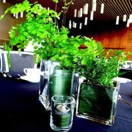 Greenscape Design Sustainable Event Centrepiece Trio Header