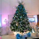 Greenscape Design Commercial Christmas Trees Vancouver
