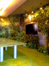 Greenscape Design Commercial Space Design