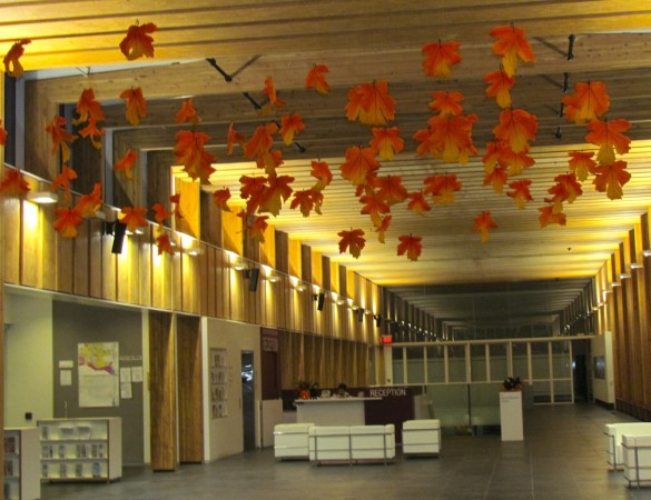 Fall decorating ideas for office - Autumn And Halloween Office Decor Greenscape