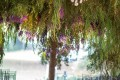 Greenscape Design Weeping Willow Tree Wedding Tent Decor