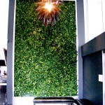 Greenscape Design Joeys Restaurant Bentall Vertical Ivy Wall