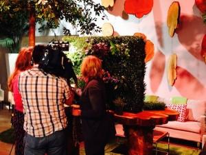 Greenscape Design Breakfast Television Vancouver City TV Vertical Gardens Close Up