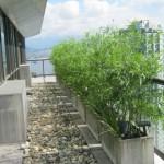 Greenscape Design Artificial Bamboo Privacy Screen Condo Balcony Landscaping Ideas