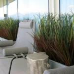 Greenscape Design Landscape Design Grass Planter Privacy Screen Condo Patio Alberta