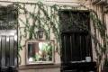 Greenscape Design Brix Restaurant Artificial Ivy Walls