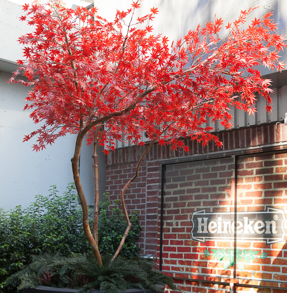 Greenscape Design Custom Artificial Outdoor Red Japanese Maple Tree copy