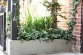 Greenscape Design Patio Planters Hops Pub New Westminster