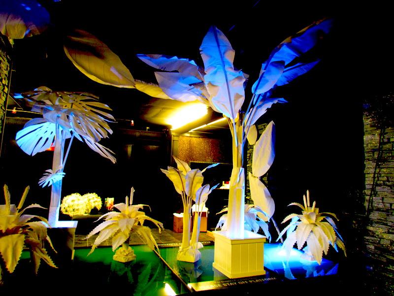 Greenscape Design After Hours Nightclub Decor Design