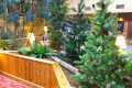 Greenscape Design Artificial Plantscaping and Design Alberta