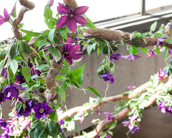 Greenscape Design Clematis and Curly Willow Chandelier copy