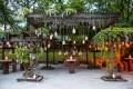 Greenscape Design Van Dusen Garden Lath House Wisteria Decor Rentals Vancouver