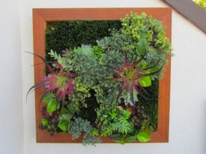 Greenscape Design Artificial Succulent Walls