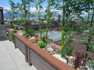 Greenscape Design Exterior Artificial Bamboo Zen Garden Vancouver