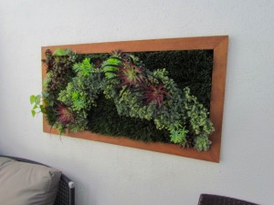 Greenscape Design Low Maintenance Green Walls