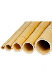 Greenscape Design Bamboo Poles - Natural Assorted Sizes