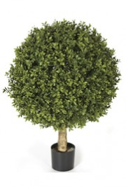 Greenscape Design Boxwood Ball Topiary - Single 24inch