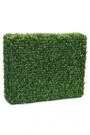 Greenscape Design Boxwood Hedge 3' x 4'